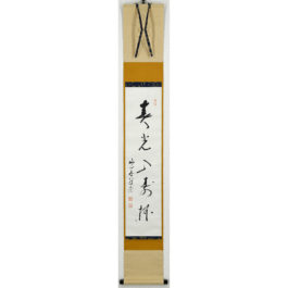 "Furukawa Taiko "" Spring light shines into a Sake cup of celebration """