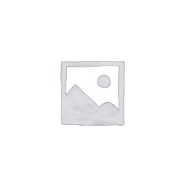 プレースホルダー画像